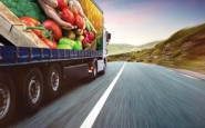 Food transport whipped into shape